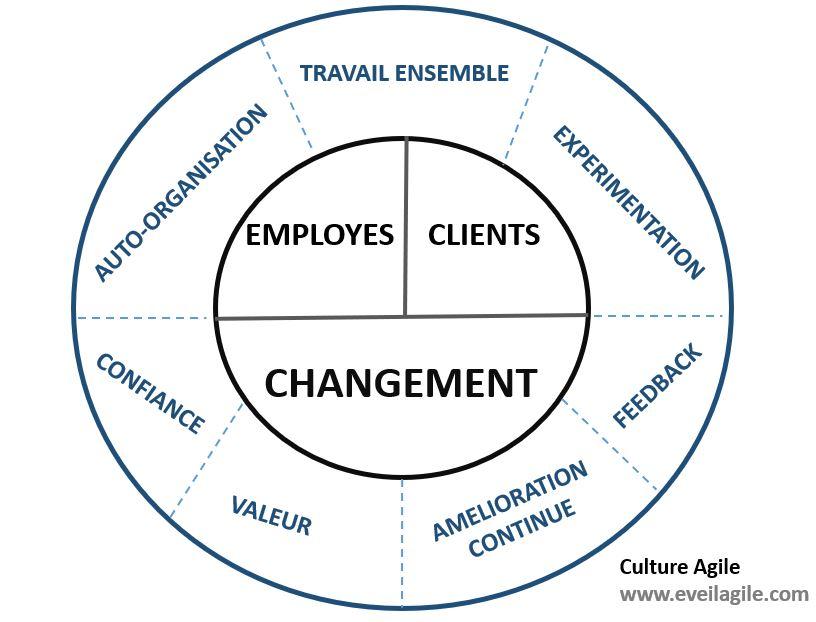 culture agile modèle éveil agile