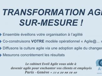 coach transformation agile entreprise agile