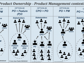 product owner vs product ownership